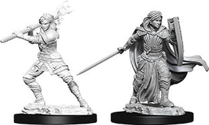 Dungeons & Dragons Nolzur`s Marvelous Unpainted Miniatures: W10 Female Human Paladin