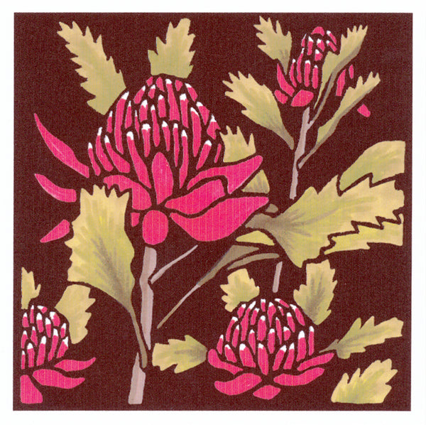 Lyn Randall - Native Plants - Waratah