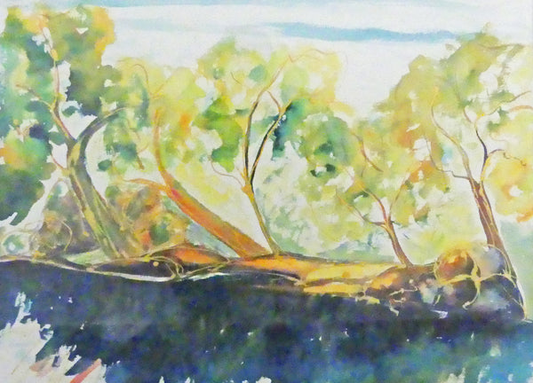 Colleen Michelle Connors - Along the Shoalhaven II