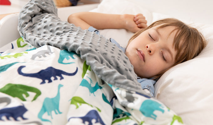 Child Sleeping With Dinosaur YNM Weighed Blanket