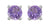 Purple Amethyst Sterling Silver Gemstone Earrings - YoTreasure