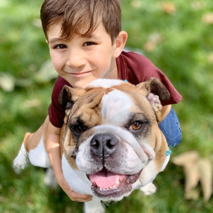 Best Breeds for Families