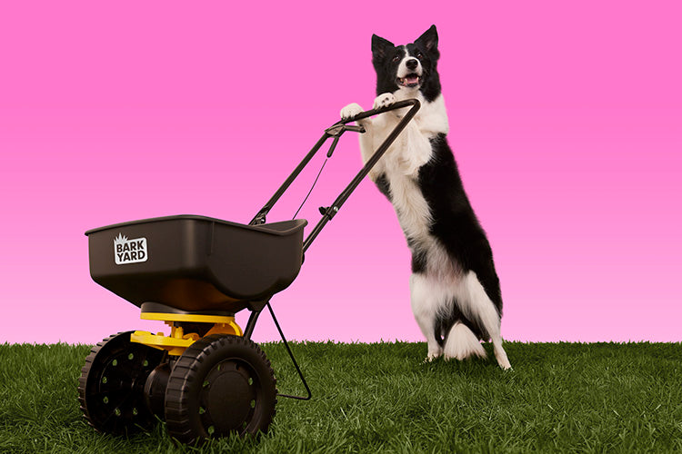 Dog pushing spreader