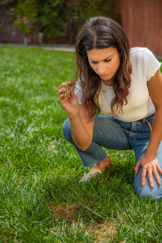 Woman checking for pee spot on lawn