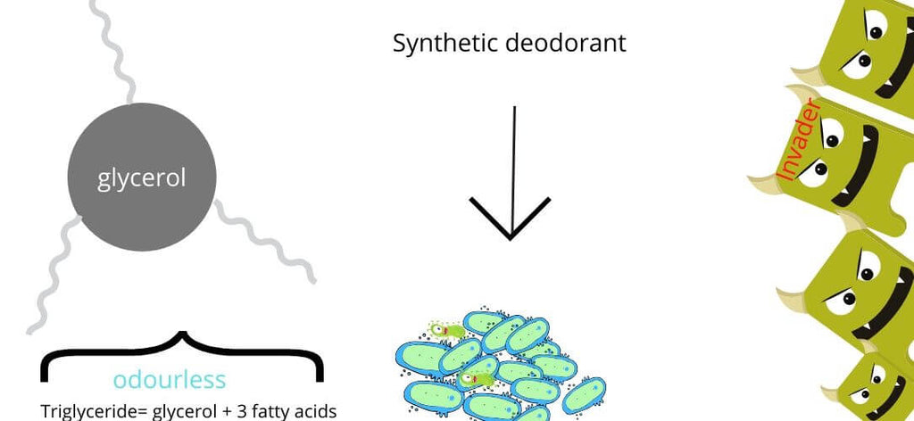 how does synthetic deodorant work