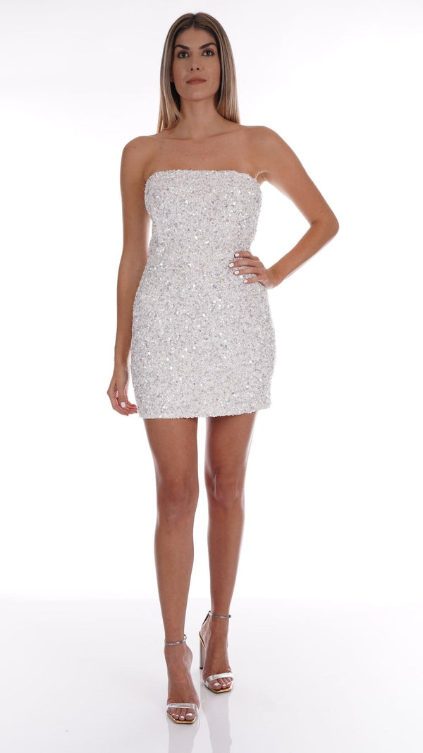 Retrofête - Heather Sequined Chiffon Mini Dress
