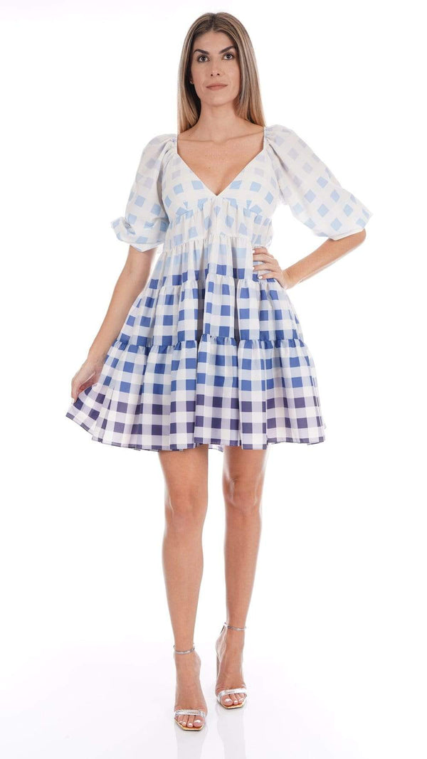 Staud - Mini Meadow Dress Blue Ombre Gingham