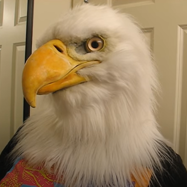 Bald eagle mask(buy two free shipping)