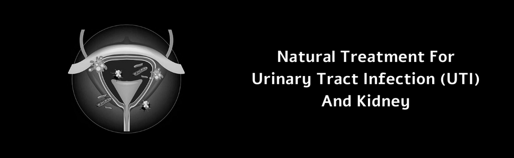 Grocare India Offers A Natural Treatment For Urinary Tract Infection (UTI) And Kidney