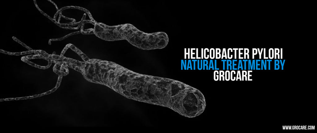 Helicobacter Pylori Natural Treatment Cure | Grocare®