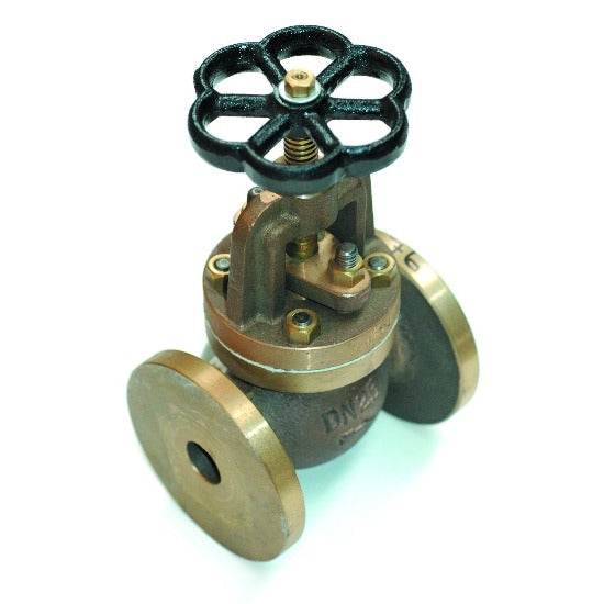 Non-return valve flanged