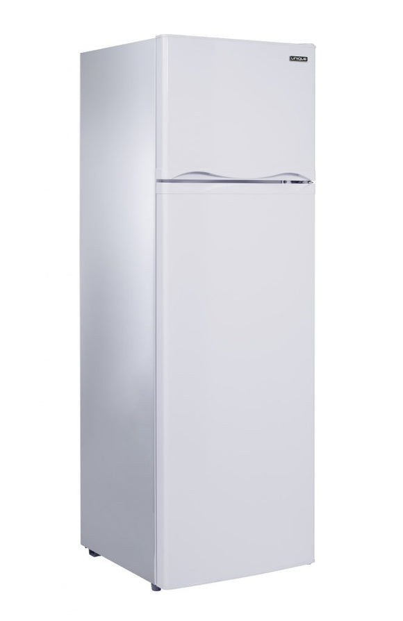 Unique 9.0 cu/ft Solar Powered DC Fridge