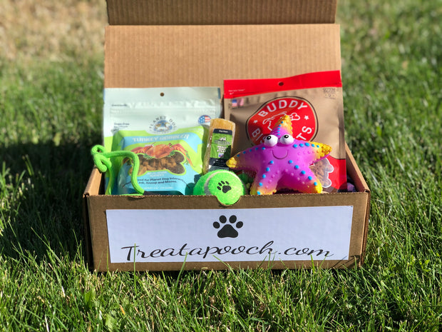 6 Month Dog Box - $32 a Month (1st months box packed FULL for new subscribers!)
