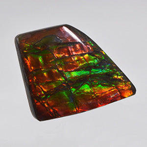 Loose Ammolite for sale