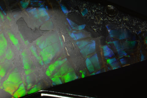 detail of green and blue ammolite