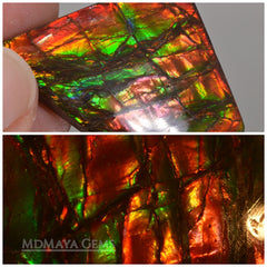 Big rainbow excellent colors Ammolite Stone 36.26 ct from Canada. This Gemstone displays iridiscent colors (green and red).