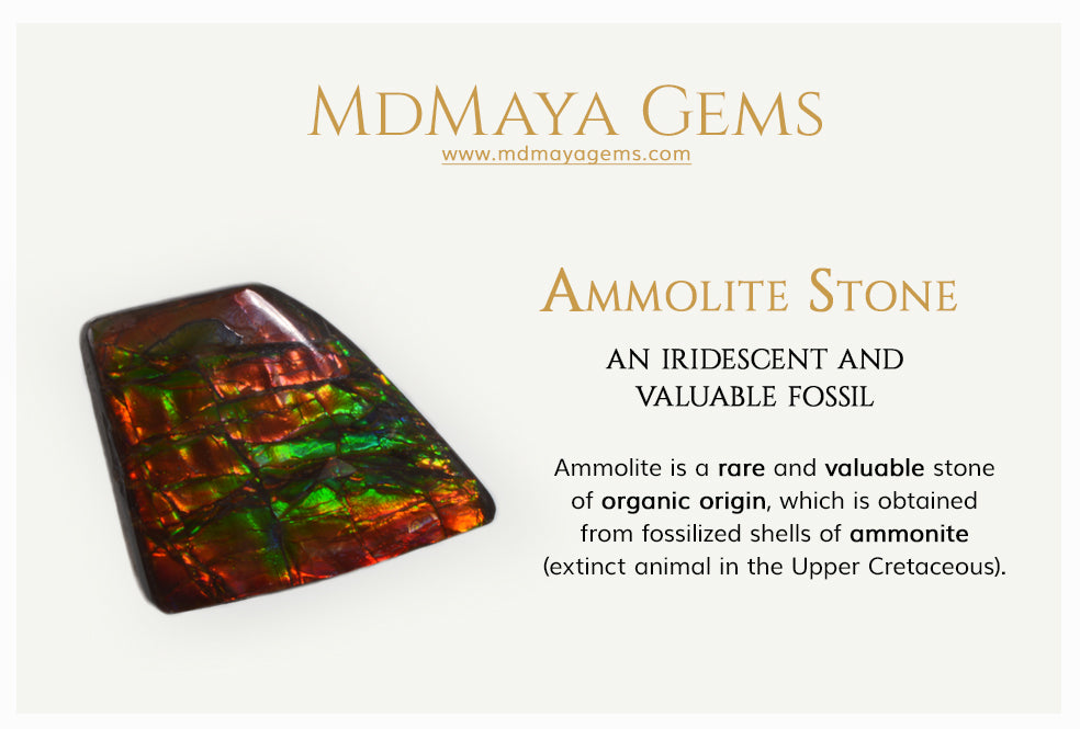 Information about Ammolite Stone