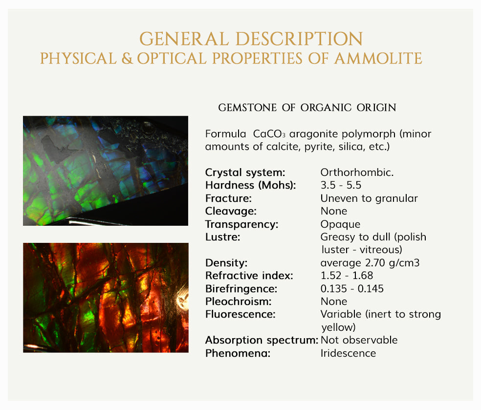 General Description of Ammolite
