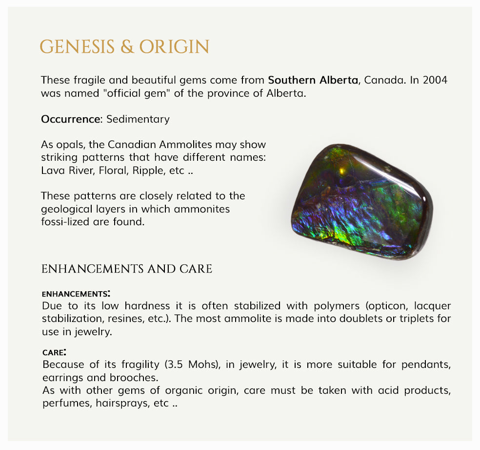 Genesis and Origin of Ammolite