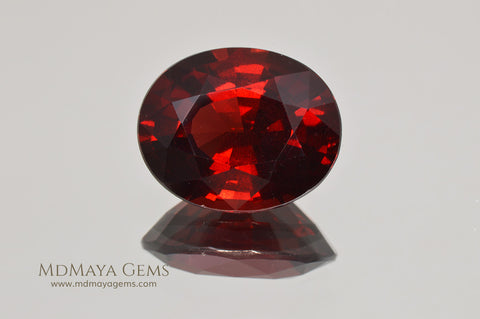 Rhodolite -  Discover our red garnets