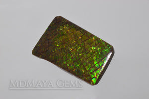 Beautiful Dragonskin Green Canadian Ammolite 23.74 ct.