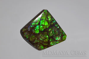 Iridescent Green Ammolite Gemstone 28.24 ct freeform Cabochon