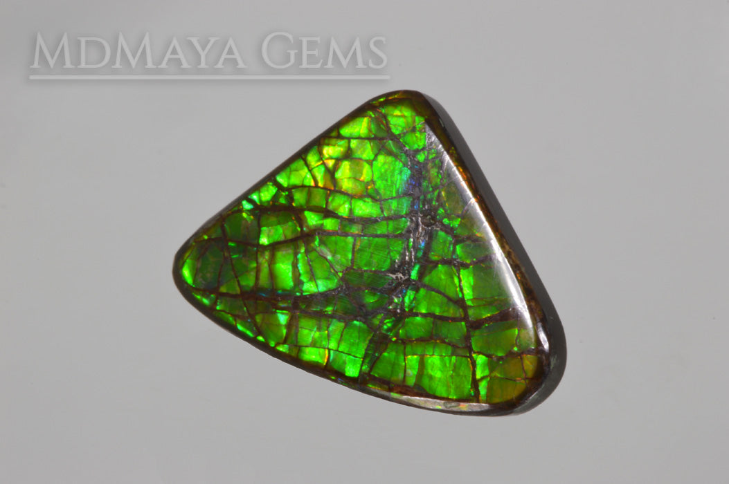 Green Dragonskin Iridescent Canadian Ammolite of 35.53 ct