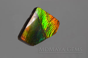 Natural Multicolour Ammolite Gemstone 8.15 carat