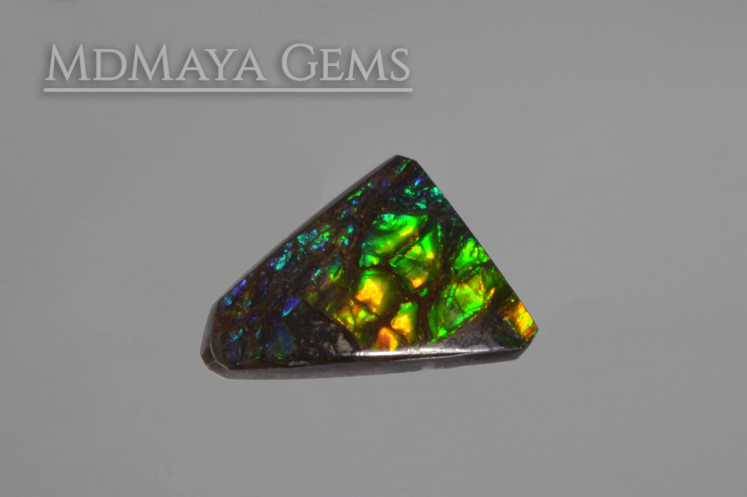 Multicolour Ammolite freeform Cabochon of 9.89 carat