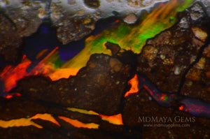Australian Solid Matrix Boulder Opal 3.06 ct under microscope