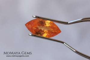Supreme Fanta Unheated Spessartite. Beautiful Color. Marquise Cut. 1.66 ct. A Perfect Gem! This gem has an internal fire, it is pure orange, it will be superb in any piece of jewelry you can imagine.