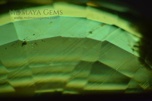 Inclusions in Vivid Green Demantoid Garnet Oval Cut 1.30 ct