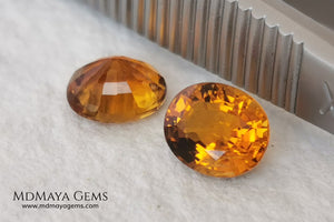 Orange Tourmaline Pair 1.46 ct. Oval Cut. Rare gemstones with a beautiful honey color. There are not many orange gems, although it is the favorite color of many people and these look impressive mounted in jewelry. Natural and untreated precious stones at an affordable price.