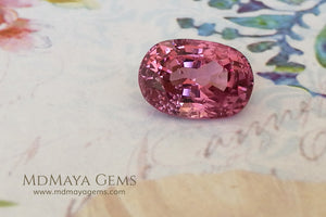 Crown Pink Burmese Spinel Oval cut 2.44 ct under daylight