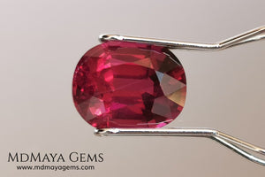 Vivid reddish purple rhodolite garnet. Oval cut, 3.87 ct.  This beauty has a story behind it, it came into my hands like a rubellite, when I analyzed it I saw that it was a garnet and not a tourmaline, I did not return it, since it has a beautiful color, very saturated, a good size and proportions, it has a very small nick in the girdle, but I'm sure it will look beautiful in any piece of jewelry you can imagine, yes, like a rhodolite garnet.
