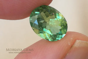 1.86 ct. .. 9.04 * 7.07 * 4.42 mm Green Paraiba Tourmaline