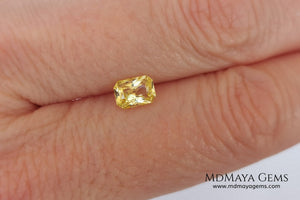 Vivid Yellow Sapphire. Radiant Cut. 0.89 ct. This small precious stone is full of life and color, its bright yellow is superb, has a nick in the crown, (this is the reason of its low price), but is an incredible gemstone that will look impressive in any ring or any piece of jewelry.