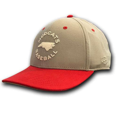 Carolina Mudcats Grey/Red Chill State Hat
