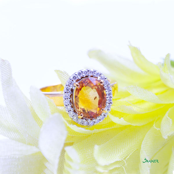 Interesting Facts On Citrine