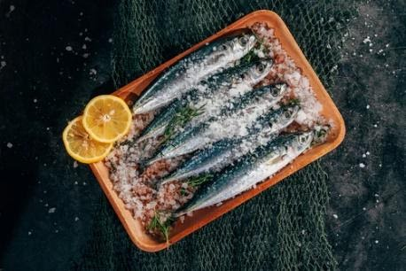 A beautiful plate of sardines covered with rock salt and orange slices.