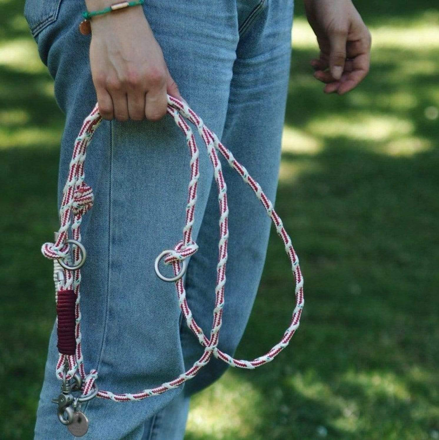Bracenet, sustainable and plastic free dog leash, eco friendly made of old fishing nets, in red and white