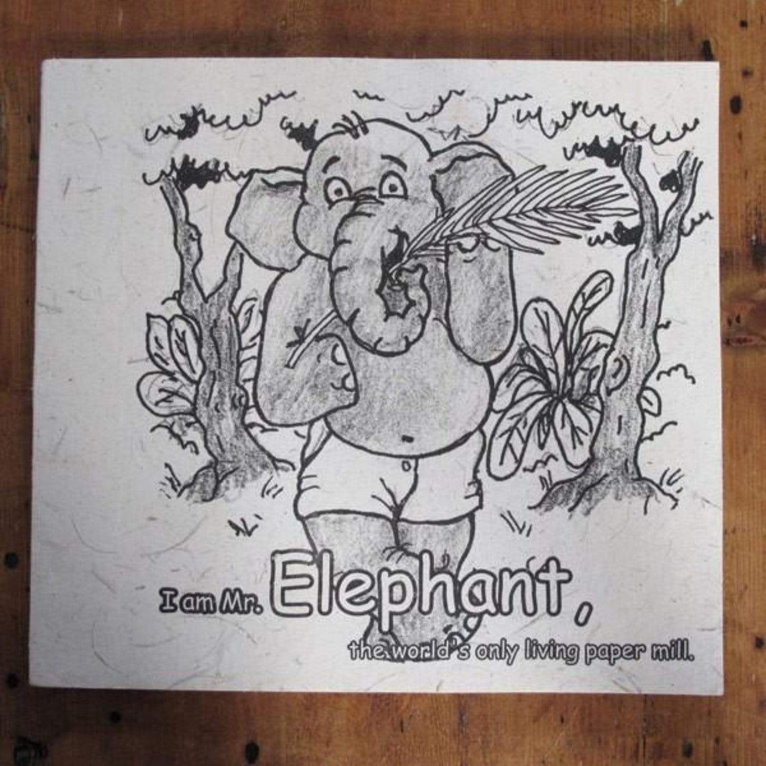 sustainable gifts Paper High Elephant dung colouring book