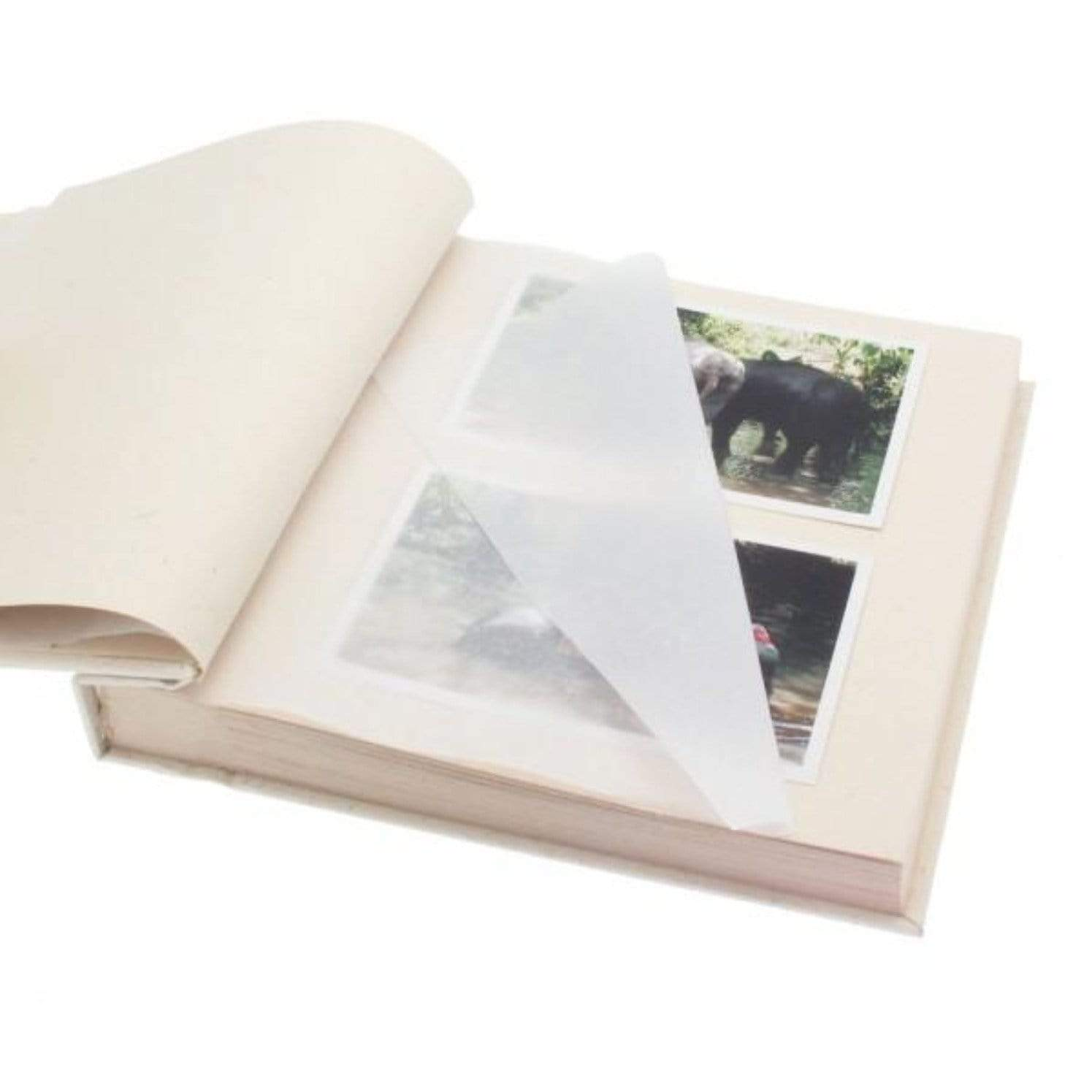 Medium photo album in sustainable certified elephant dung paper detail