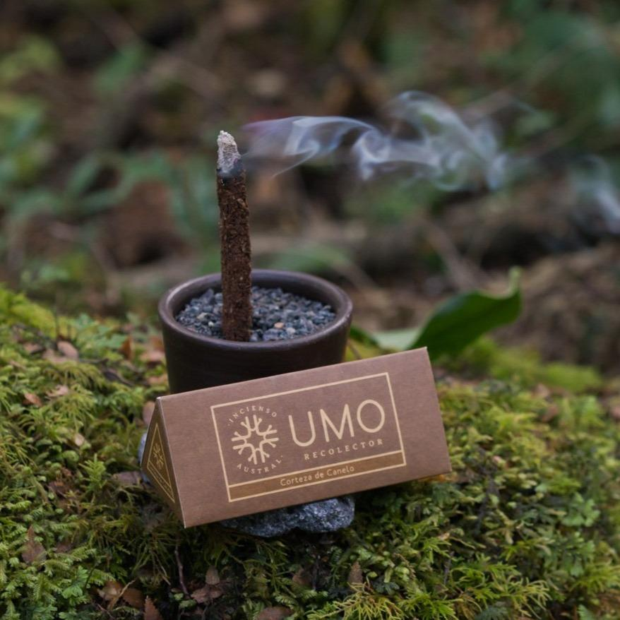 Sustainable gift from Patagonia - incense with lava base in the forest