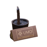 Sustainable gift from Patagonia - incense with lava base and cinnamon sticks