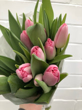 Load image into Gallery viewer, Van Dyk Tulips
