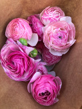 Load image into Gallery viewer, Local Ranunculus