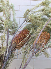 Load image into Gallery viewer, Dried Banksia