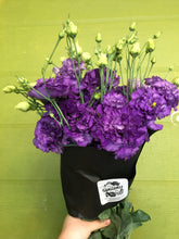 Load image into Gallery viewer, Local Lisianthus