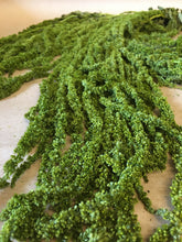 Load image into Gallery viewer, Dried Green Amaranthus